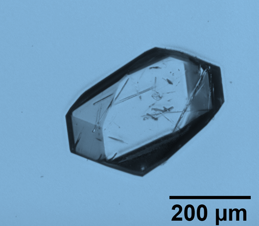 X-ray Quality Single Crystal within Six Hours